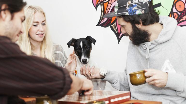 Två killar och en tjej spelar spel