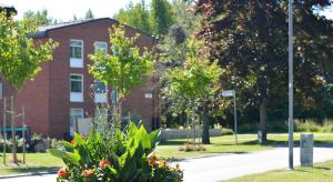 Grönska i Varberga